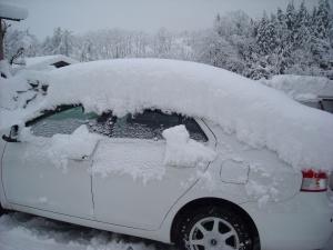 またまた大雪!!